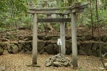 三つ鳥居の神社 京都の蚕の社 墨田区の三柱鳥居と三井家