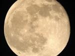 full-moon-300x300