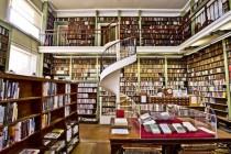 読書環境のダイバシティー化